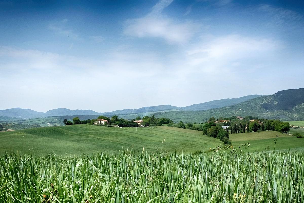 Il verde Mugello in Toscana (CC BY 4.0 @fanpage.it/Ilaria Vangi).