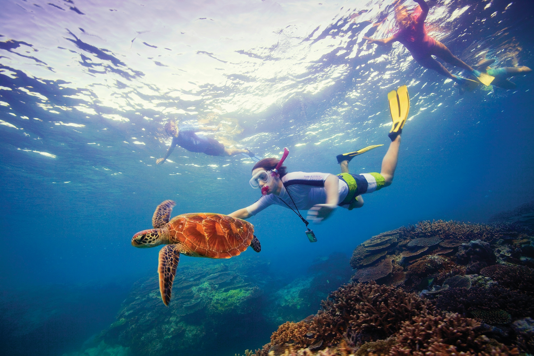 Snorkelling, Great Barrier Reef, QLD, Mandatory credit: Tourism Australia, Photographer: Darren Jew.