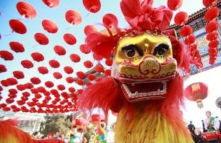 Capodanno cinese, il 2016 è l'Anno della Scimmia