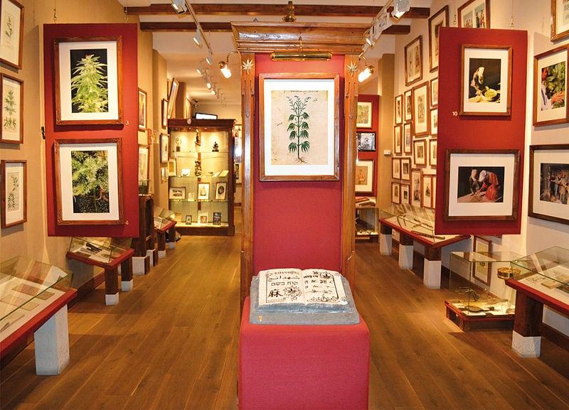 Interno del Museo della marihuana di Amsterdam. Foto da Wikipedia