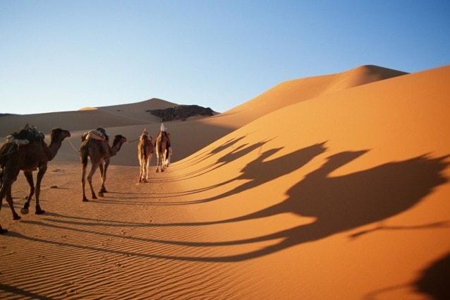 Deserto del Sahara, Algeria – Foto Wikimedia Commons