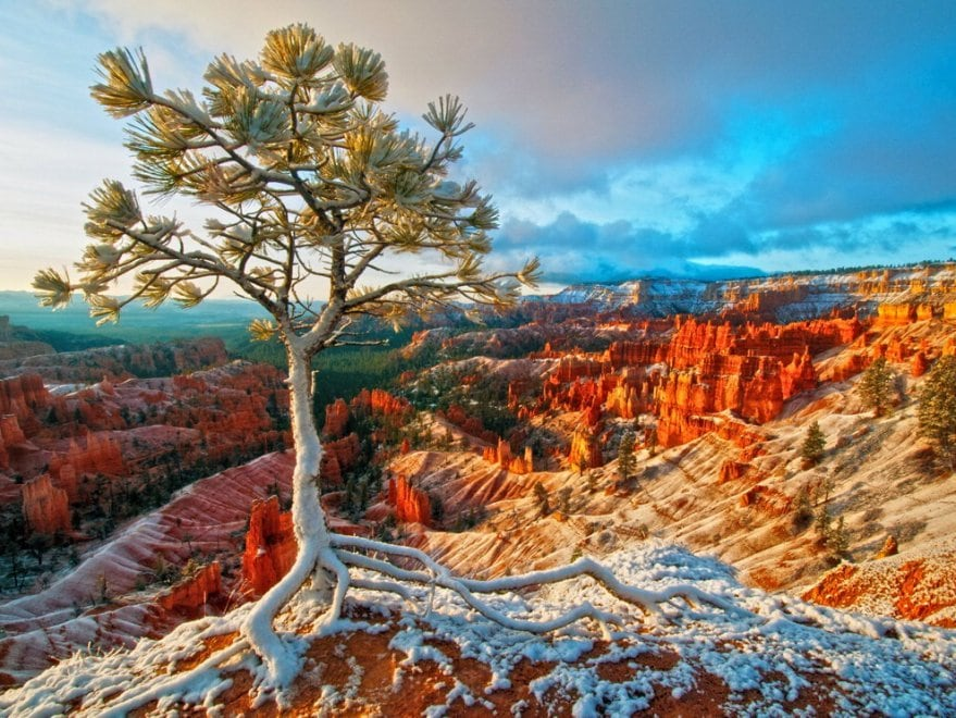 Bryce Canyon National Park – Foto Curtis Kautzer