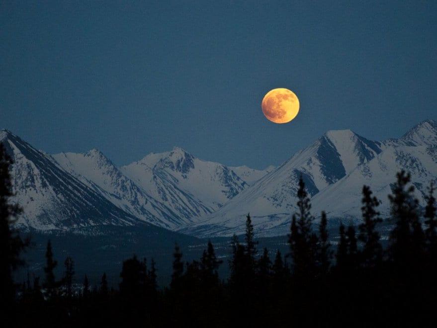Denali National Park – Foto Katie Thoresen