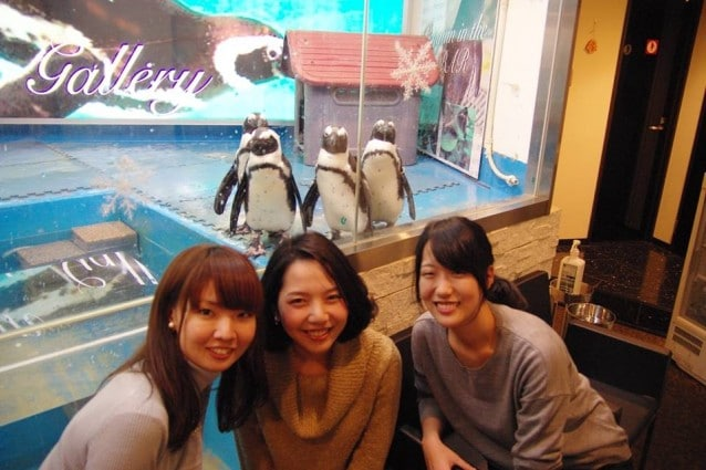 Penguin ni Iru Café, Tokyo