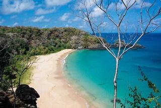 Le spiagge più belle del Brasile
