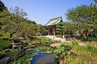 10 foto per innamorarsi del Giappone