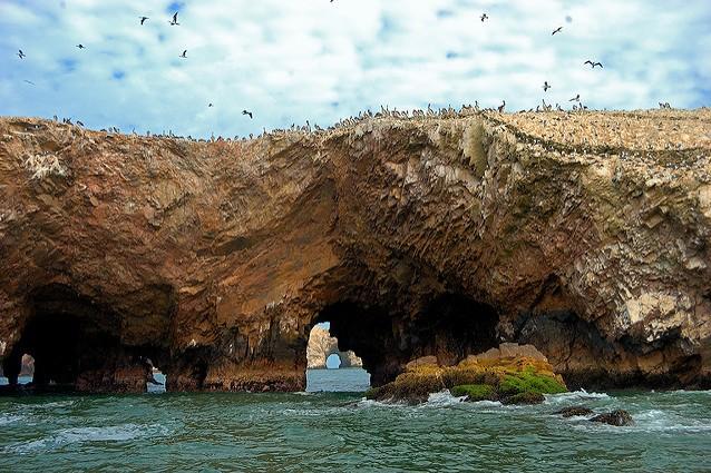 Isole Ballestas – Foto di Martin Garcia