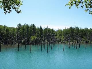 Giappone, il lago incantato che cambia colore