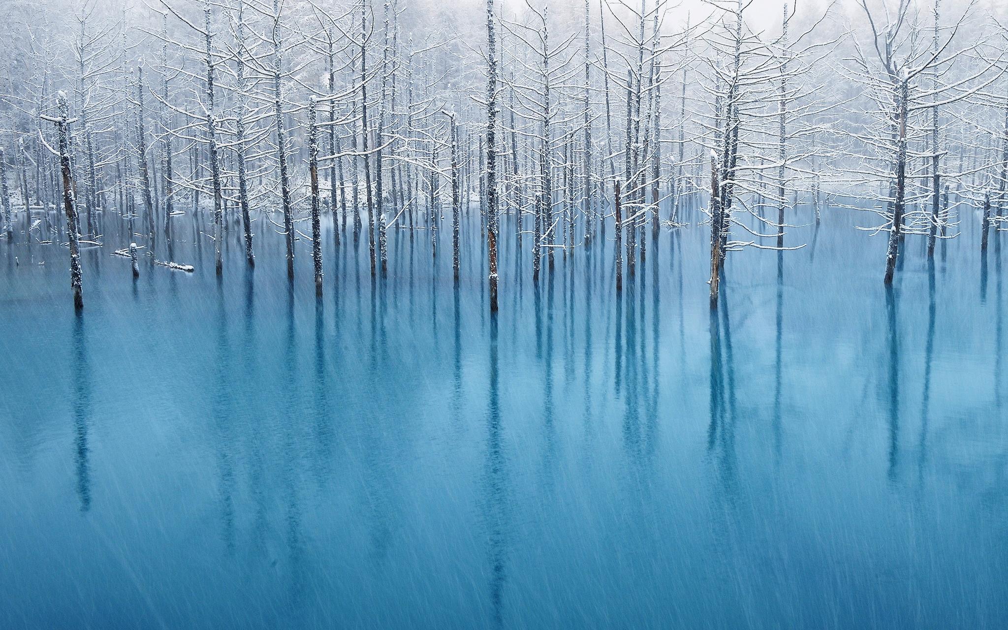 Blue Pond in inverno– Foto di Kent Shiraishi