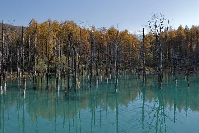 Blue Pond in autunno – Foto di trasroid