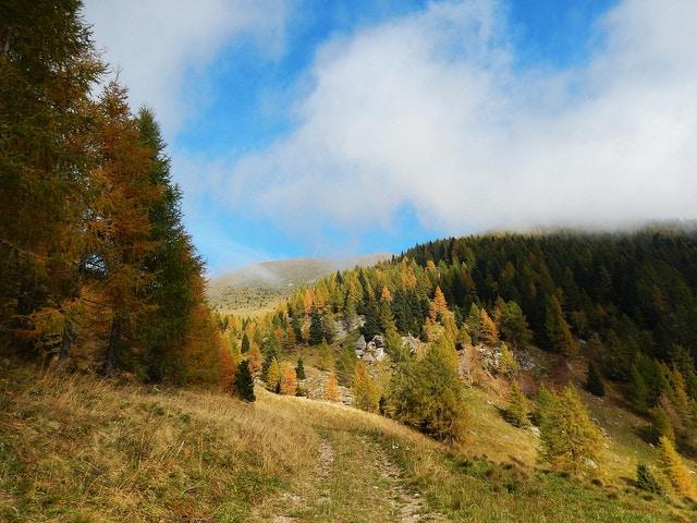 Rocegno Terme. Foto di Fra