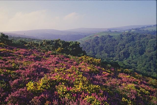 Exmoor National Park – Foto di Natural England