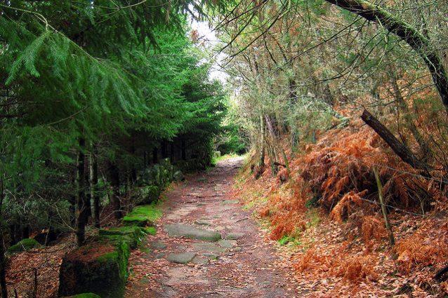 Ruta de San Pedro de Rocas. Foto di Cayetano