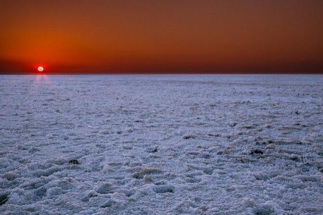 Alba sul Rann di Kutch – Foto dpbirds