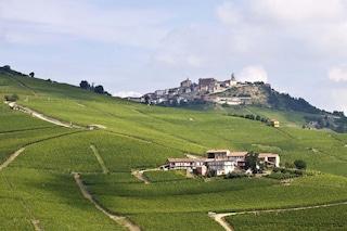 Un week end nelle Langhe: terra di Castelli e vini in Piemonte