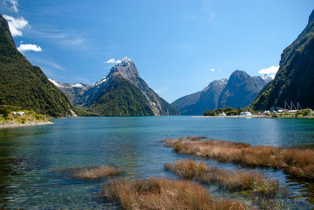 Milford Sound – Foto di Jocelyn Kinghorn