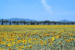 Maremma: un tour nel cuore selvaggio della Toscana