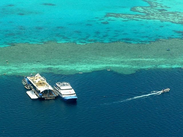 Grande Barriera Corallina – Foto Wikimedia Commons