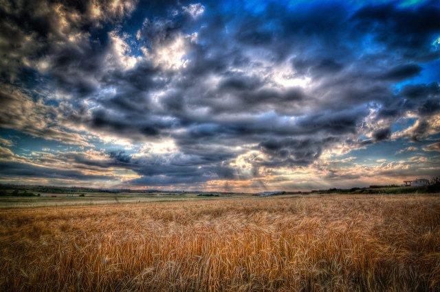 Cipro. Foto di Lefteris Katsouromallis