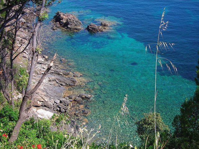Isola d'Elba – Foto di Roberto