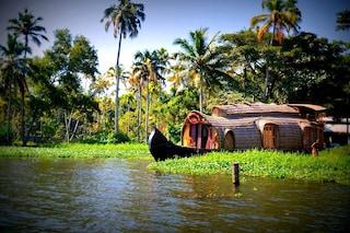 Kerala: la regione indiana del cocco e dell'Ayurveda