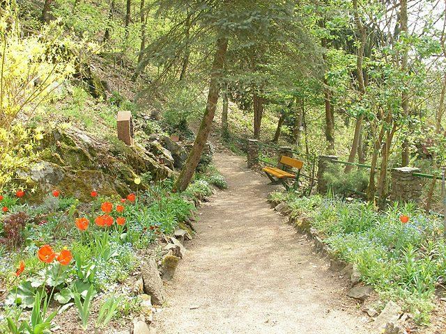 Il sentiero per Notre Dame de Dusenbach – Foto Wikimedia Commons