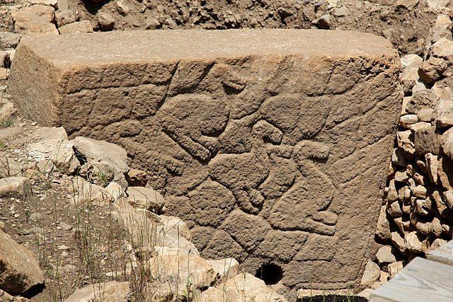 Immagini di animali sulle pietre di Gobekli Tepe – Foto Wikimedia Commons