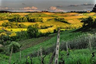 Viaggio tra le colline del Chianti