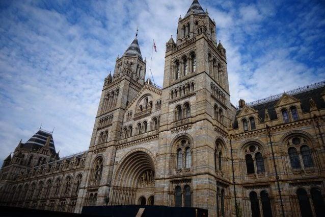 Museo di storia naturale di Londra