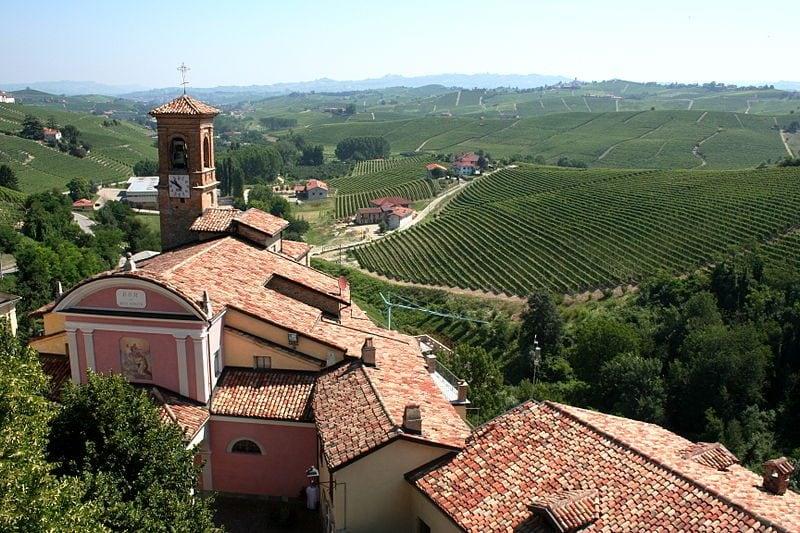 Vista della regione vinicola italiana del Piemonte con vigneti nei pressi di Barolo