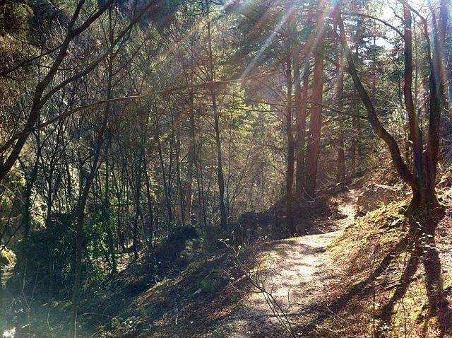 Sentiero presso le Gole di Celano – Foto Wikipedia