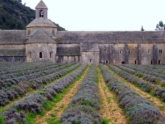 Senanque Abbey, Luberon,