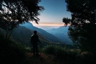 Munnar: verdi colline e alte vette in un paradiso naturale indiano