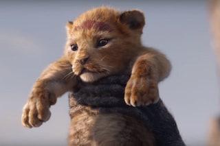 """Torna il Re Leone: il significato dell'intro africana della colonna sonora """"Il cerchio della vita"""""""