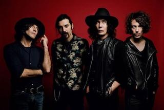 """Gli Zen Circus cantano """"L'amore è una dittatura"""" a Sanremo 2019"""