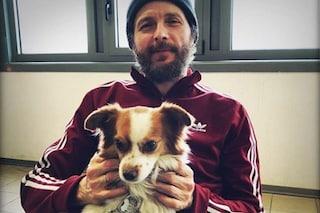 """Cani abbandonati, Jovanotti se ne fa carico ancora una volta: """"Persona splendida, ci aiuta sempre"""""""