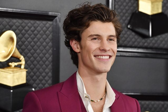 Shawn Mendes (Frazer Harrison/Getty Images for The Recording Academy)