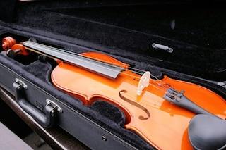 Custodie per violino: quali sono le migliori, classifica e prezzi