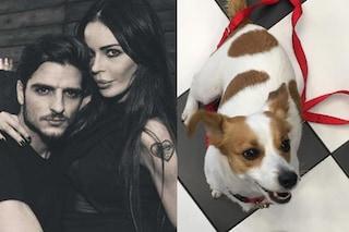 """Lo scherzo del fidanzato di Nina Moric a Cecilia Rodriguez: """"Abbiamo noi il cane"""""""