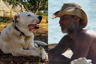 """Nel passato di Raz Degan, il dolore per la morte del cane Max: """"Il cancro lo ha ucciso a 8 anni"""""""