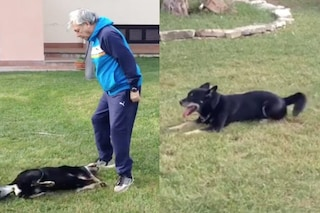 """È morto Larts, il cane di Nino D'Angelo: """"L'amico mio più grande"""""""