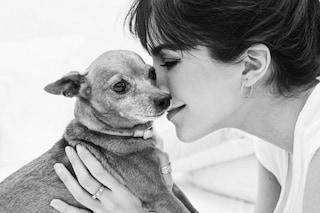 """Rocio Munoz Morales piange la morte del cane Pinchito: """"Il mio cuore è infinitamente triste"""""""