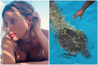 """Alessia Marcuzzi assiste al salvataggio di una tartaruga: """"È stata un'emozione incredibile salvarla"""""""