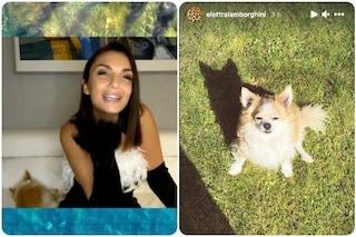 """Elettra Lamborghini: """"È morto il mio cane"""", era con lei nel collegamento con L'Isola dei Famosi"""