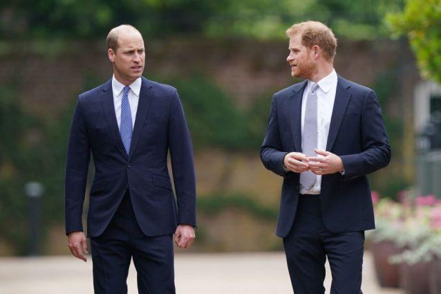 """""""Hanno recitato una parte"""", il retroscena su William e Harry riuniti in nome della mamma Diana"""