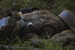 Paul Rosolie mangiato vivo da un anaconda, ecco le prime immagini