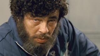 Stasera in TV: i programmi del 28 giugno, dal film Escobar alla fiction Purché finisca bene