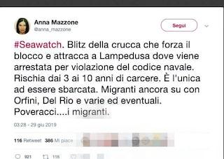 Giornalista del Tg2 insulta Carola Rackete su Twitter, il PD chiede un'interrogazione parlamentare