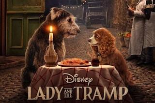 Il trailer di Lilli e il vagabondo, il primo live-action per il piccolo schermo in onda su Disney+