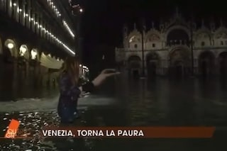 """Venezia allagata, uomo si tuffa a Piazza San Marco durante Quarto Grado. Nuzzi: """"Sarà uno straniero"""""""